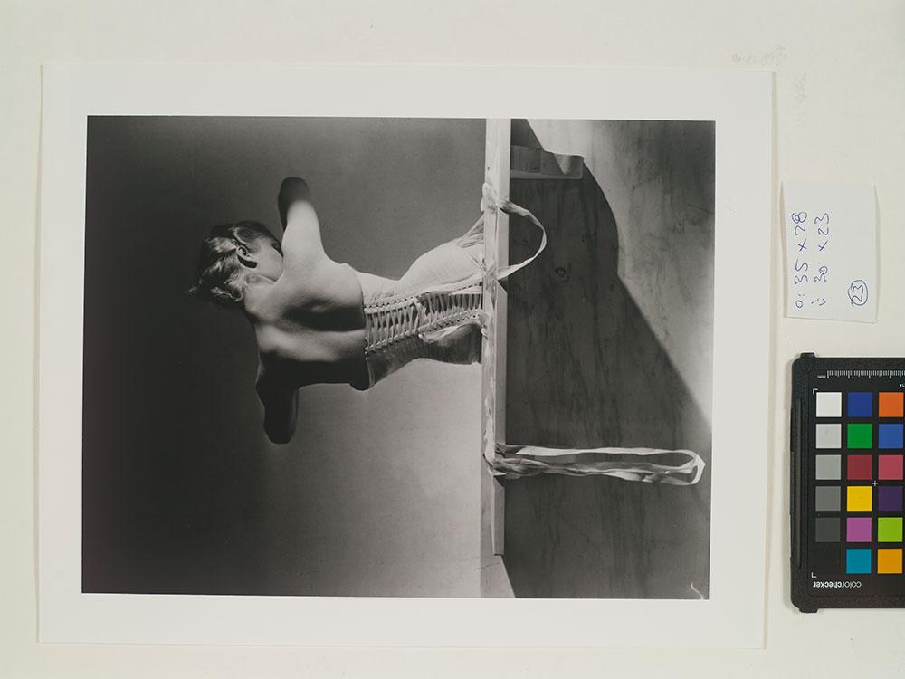 Reprofotografie Horst