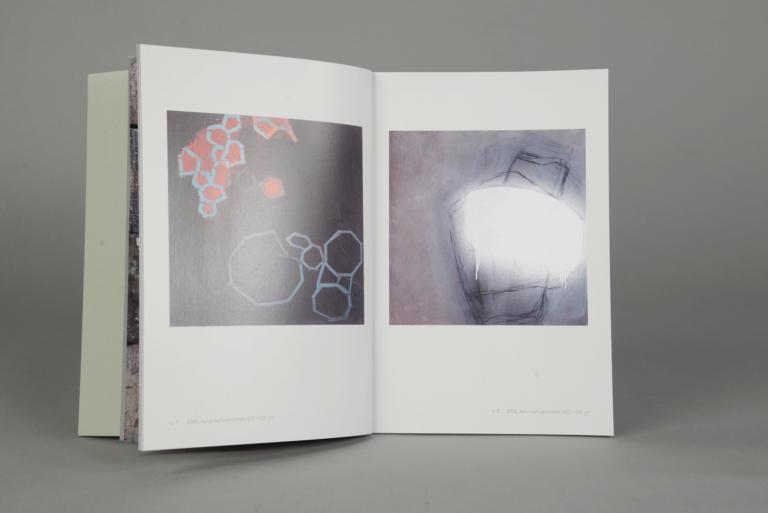 Anne-D-Borgen-Buch-3